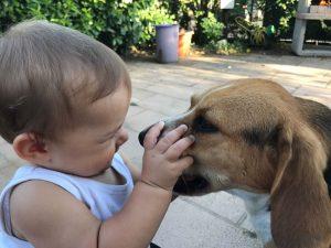 Bambini e cani: benefici per la crescita